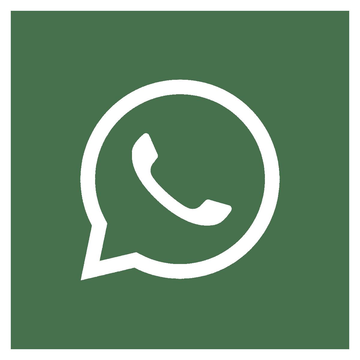 Whatsapp-Newsletter